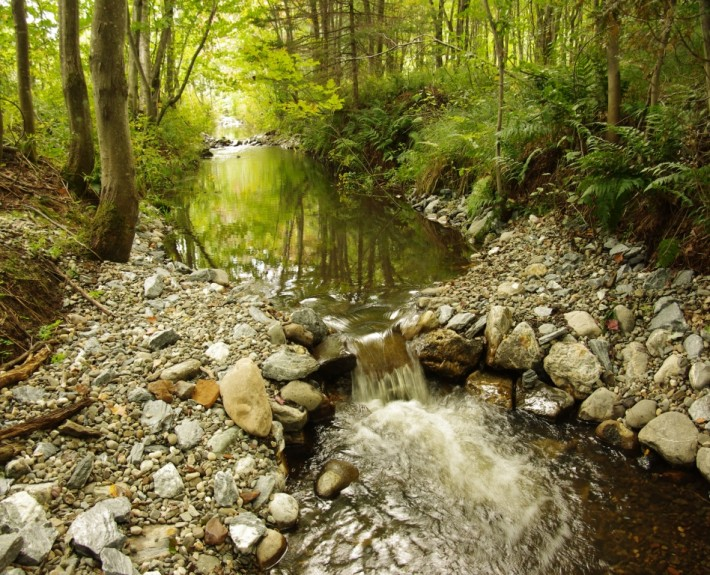 Frayères aménagées dans la rivière Cugnet à Saint-Lambert-de-Lauzon (COBARIC, 2014)