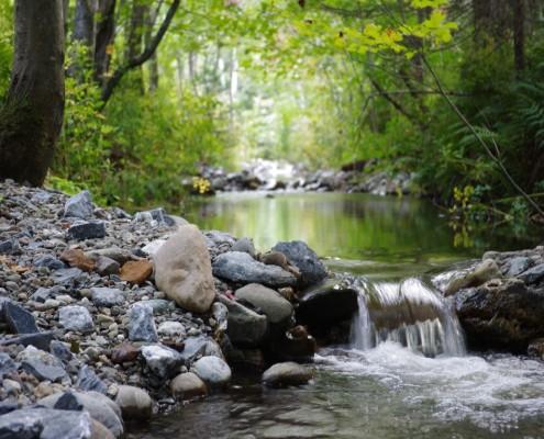 Seuils aménagés dans la rivière Cugnet à Saint-Lambert-de-Lauzon (COBARIC, 2014)