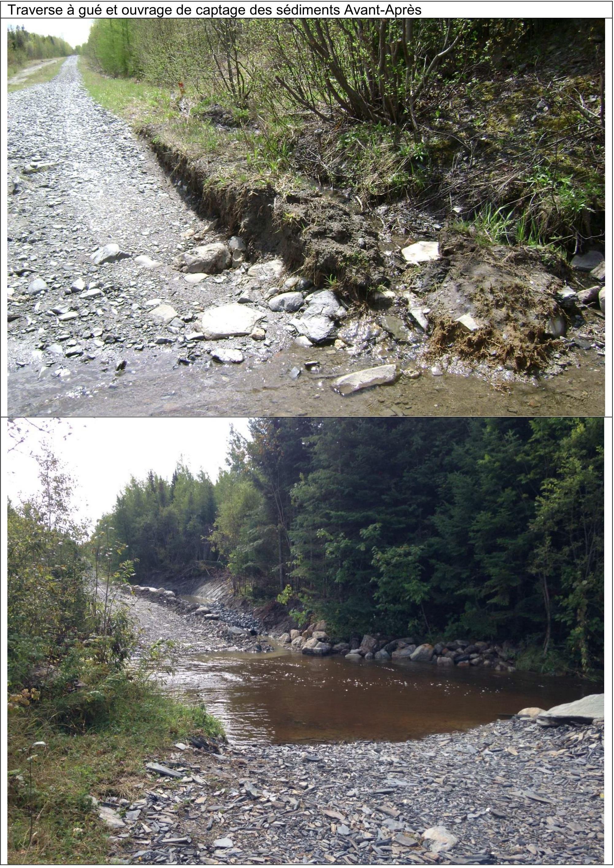 Am 233 Lioration Habitat Ruisseau Ardoise Cobaric