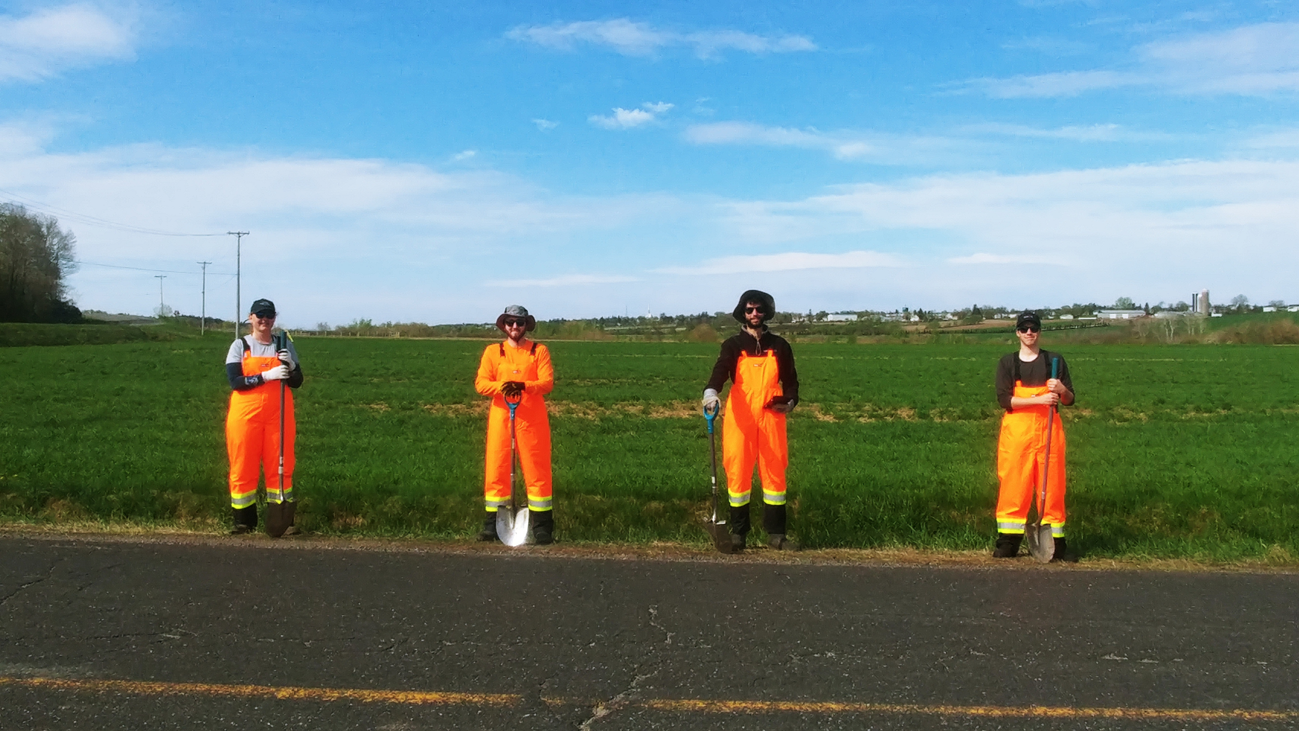 Quatre éradicateurs sur le bord d'une route, prêt à arracher la berce du Caucase.